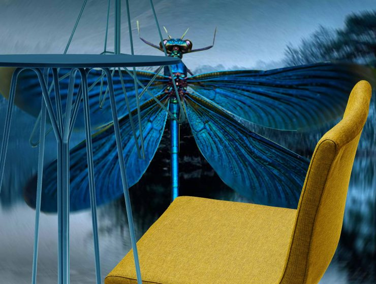 dragon fly, libelula,claire davies design